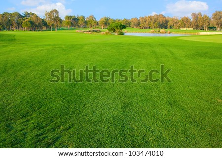 Bright grass of golf field - stock photo