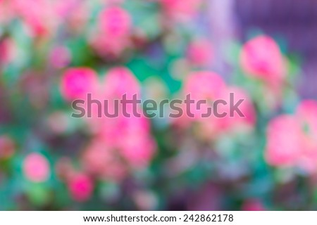 Bright green and pink blur bokeh abstract light flora background - stock photo