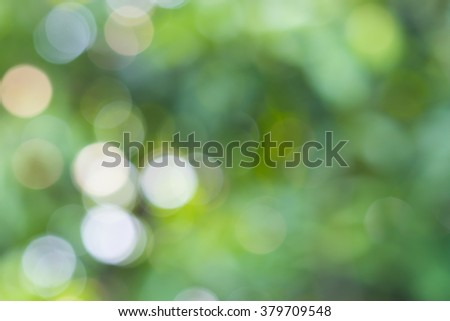 Bright green and white blur bokeh abstract light spring forest background. - stock photo