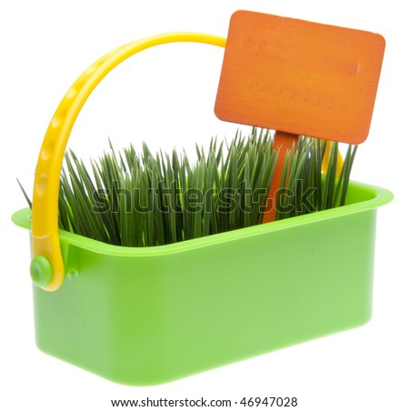 Bright green basket of spring grass with an orange blank garden sign isolated on white with a clipping path.