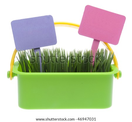 Bright green basket of spring grass with purple and pink blank garden signs isolated on white with a clipping path. - stock photo