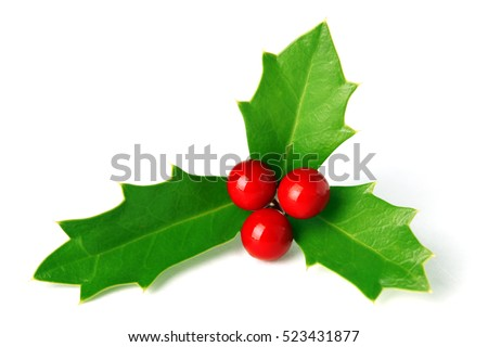 Bright green Christmas holly with red berries isolated on white