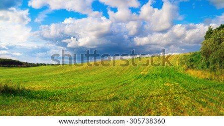 Bright green grass and cumulus clouds. Hill and blue sky. Summer landscape. Panoramic shot.