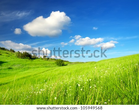 Bright green meadow and clouds. Fresh summer composition - stock photo