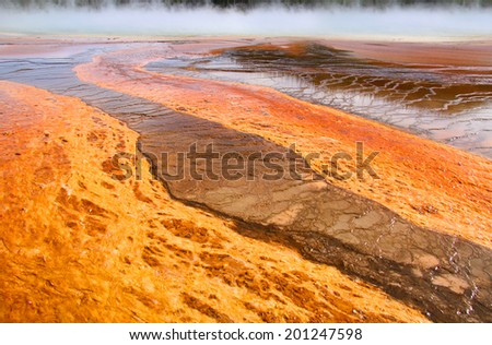Bright orange bacterial formations at the Geysers in Yellowstone national park - stock photo