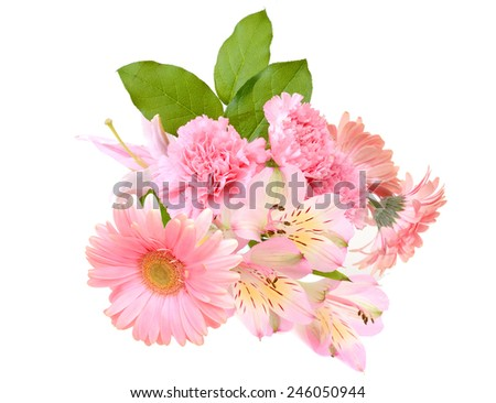 Bright pink bouquet flower above, isolated on white - stock photo
