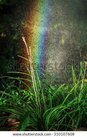 Bright rainbow in drops of flowing water during the sprinkling. Image with selective focus - stock photo