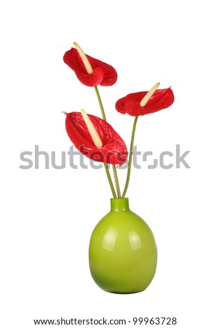 Bright red Anthurium flowers in green vase - stock photo
