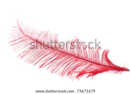 Bright red plume over pure white background