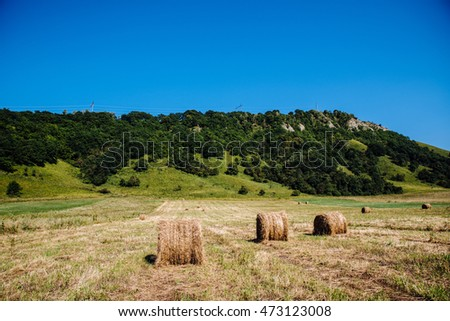 Bright summer landscape with haystacks and mountains