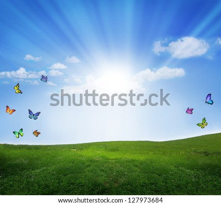 Bright summer with butterflies, natural background - stock photo