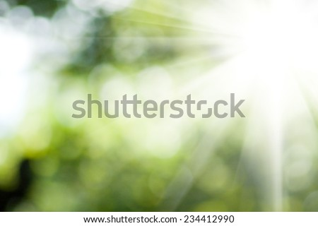 bright sun on natural green background - stock photo