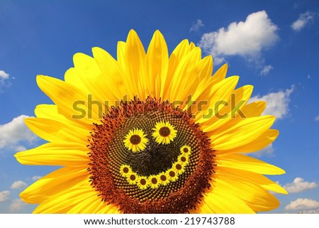 bright sunflower with smiling face, against blue sky with clouds - stock photo