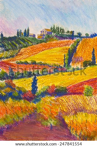 bright Tuscan landscape with vineyard