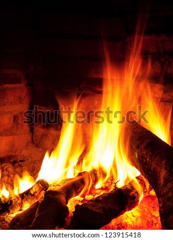Bright warm fire in fireplace vertical image