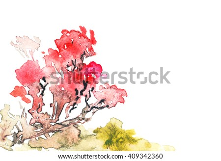 Bright Watercolor Illustration of Sakura Blossom. Japanese Red Cherry Tree. Hand Drawn Image Isolated on White Background