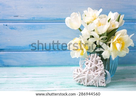 Bright white daffodils and tulips  flowers in blue vase and white heart  on turquoise  painted wooden planks against blue wall. Selective focus. Place for text.  - stock photo