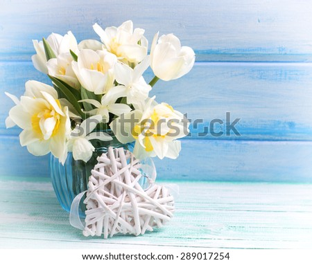 Bright white daffodils and tulips  flowers in blue vase and white heart  on turquoise  painted wooden planks against blue wall. Selective focus. Place for text.Toned image. - stock photo