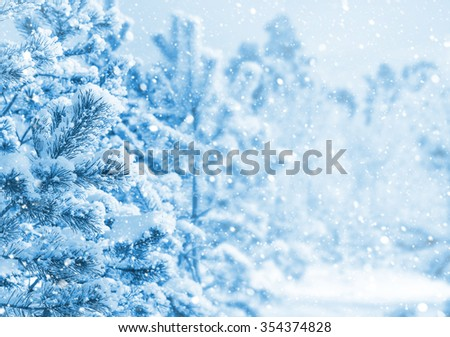 Bright winter landscape with snow-covered pine trees - stock photo