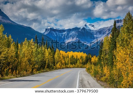 Bright yellow aspen and birch beside the road. Canadian Rockies, Banff National Park in the autumn. Majestic mountains and glaciers on the background of cloudy sky - stock photo