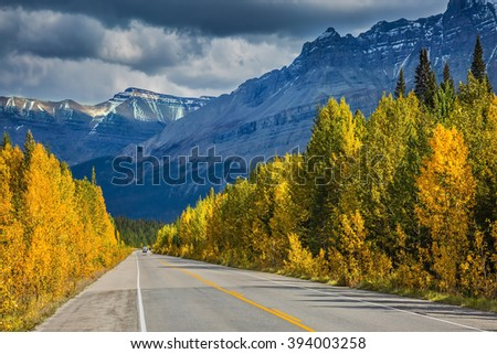 Bright yellow aspen and birch beside the road.  Majestic mountains and glaciers on the background of cloudy sky. Canadian Rockies, Banff National Park in the autumn - stock photo
