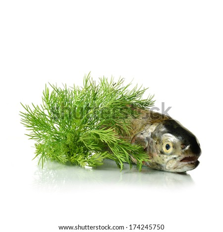 Brightly lit, tack sharp focused, freshwater Brown Trout on a white reflective surface with fresh Dill herb seasoning. Perfect for your added caption :) Copy space. - stock photo