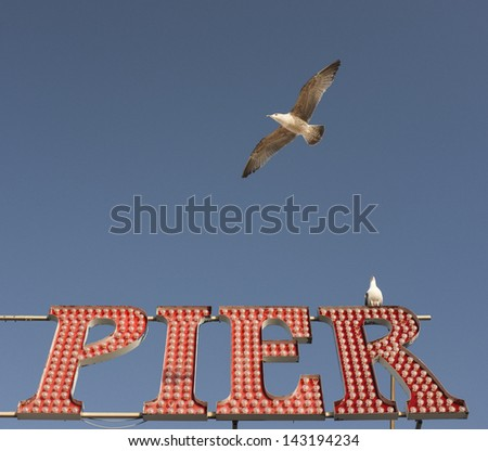 Brighton Pier sign with resident seagulls - stock photo