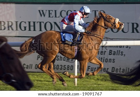 BRIGHTON RACECOURSE - OCTOBER 16, 2008: Racehorse â??Flying Gooseâ?? finishing fourth place at the races - stock photo
