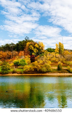brilliant autumn leaves reflecting in a pond, south australia - stock photo
