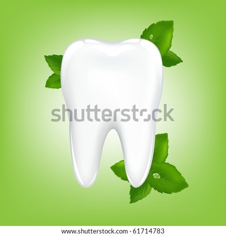 Brilliant White Tooth With Mint, On Green Background - stock photo