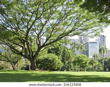 City garden stock images royalty free images vectors for Landscape architecture courses brisbane