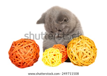British kitten with the balls on a white background  - stock photo