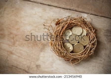 British Pound Coins with Bird Nest  - stock photo