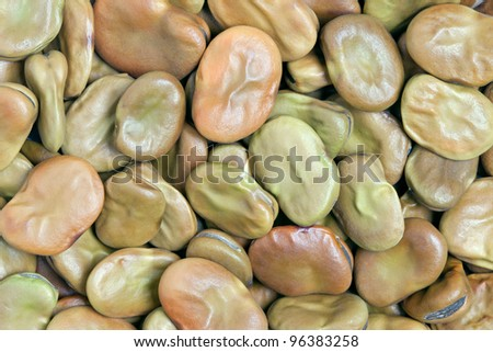Broad Beans texture background. Also called Fava or Windsor Bean. Huge, substantial beans with a creamy texture; nutty, sweet earthy flavor. - stock photo