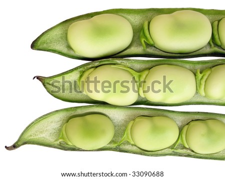 Broad been seeds in pods - stock photo