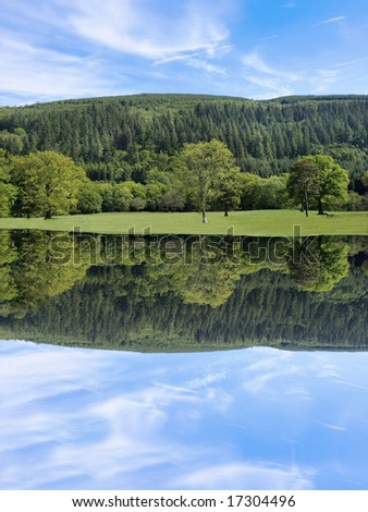 Broad leaf trees of mainly oak in rural meadows in early summer with evergreen pines and a blue sky to the rear,  with reflection over water. - stock photo