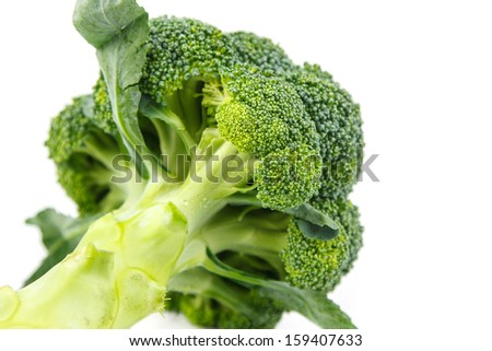 broccoli against  white background
