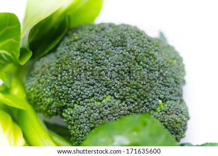 Broccoli close up - stock photo