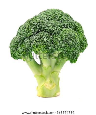 Broccoli close up on white background - stock photo