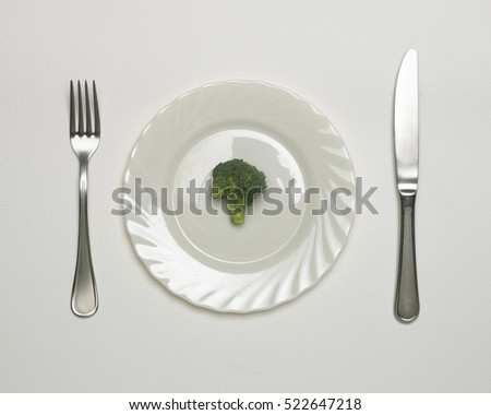 BROCCOLI FLORET ON WHITE PLATE