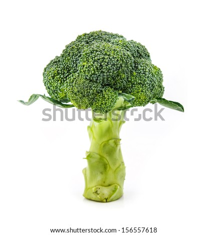 Broccoli stand against  white background