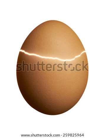 broken brown egg isolated on white background - stock photo