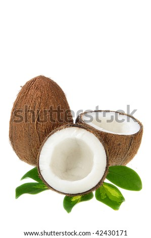 Broken coconut with green plant