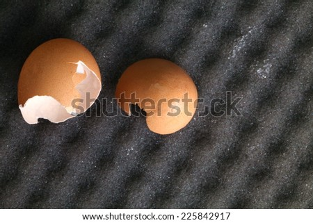 Broken egg put on the grey color sponge represent the broken egg shell still broke from a good protection