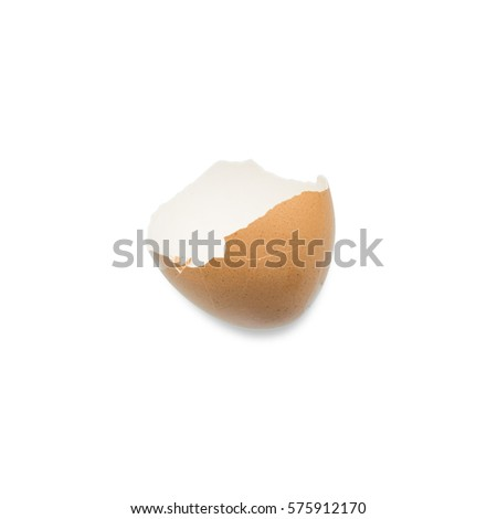 broken egg shell isolated on white background