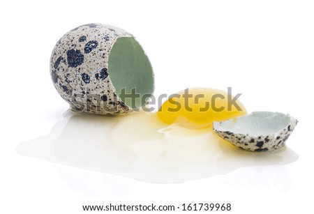 Broken quail egg isolated on white background - stock photo