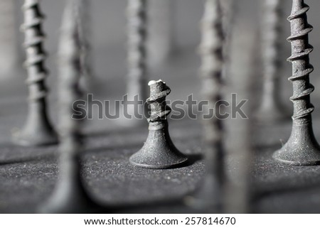 Broken Screw.  Black and white picture of a brokew screw standing among other screws.  All in close up. - stock photo