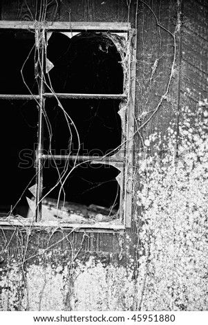 broken window and mildew covered wall - stock photo