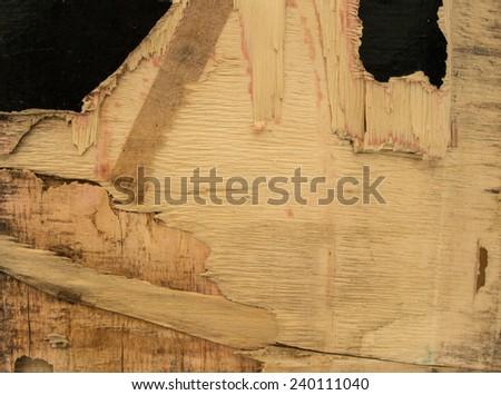 Broken wooden panel - stock photo