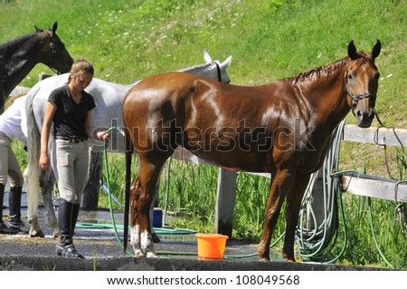 BROMONT-CANADA JULY 19: Unknown rider wash his horse during 2012, INTERNATIONAL BROMONT on July 19, 2012 At the Equestrian 1976 Montreal Olympic Park. - stock photo
